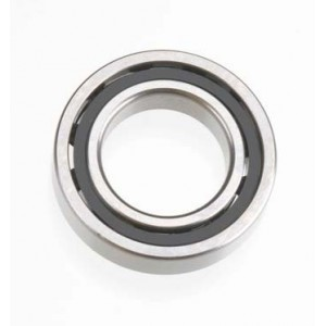 Main Bearing T1201 Speed Ceramic 21931100