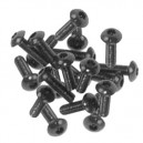 Screw M3x10 TBEI round allen head(20) SPM00250